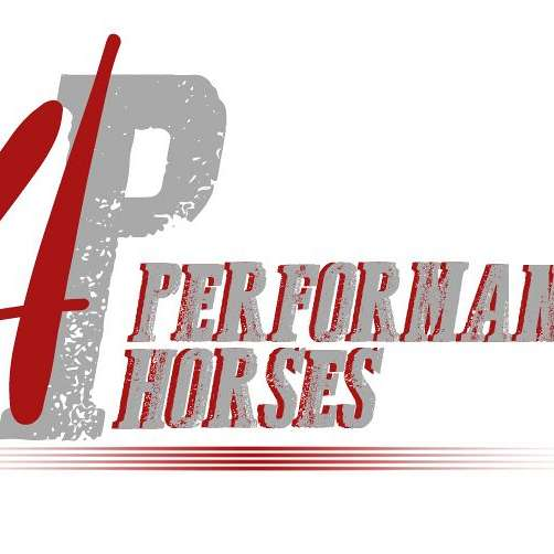 4P Performance Horses