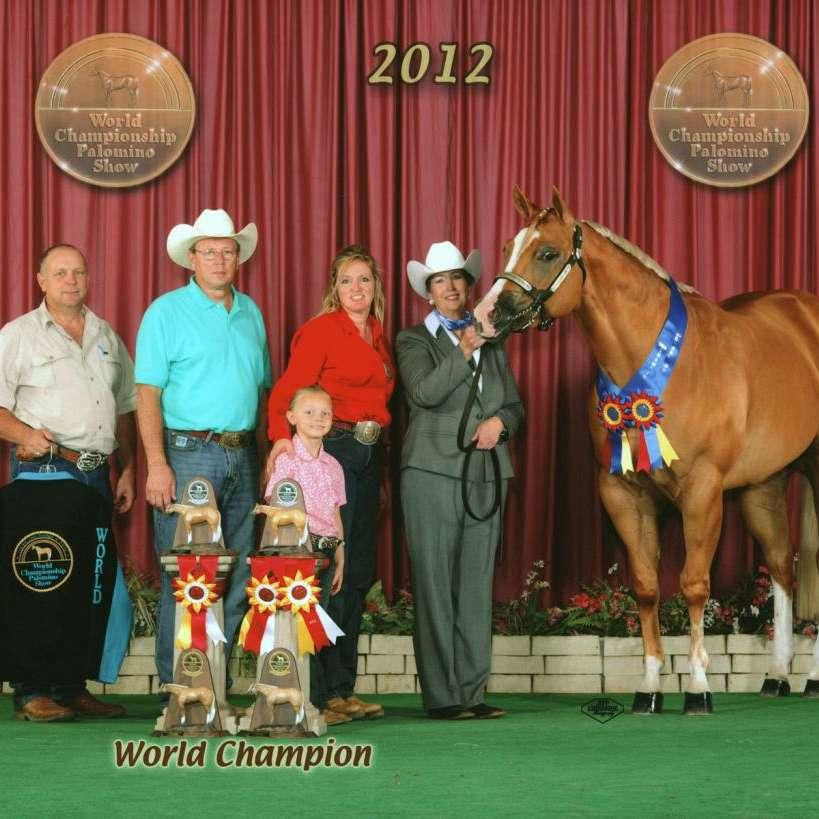 MILLS QUARTER HORSES