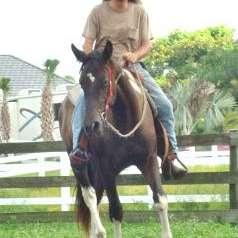 Lone Star Horsemanship, Inc.