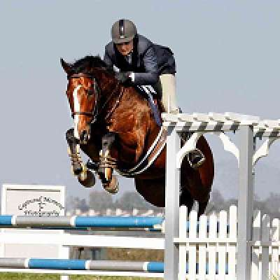 Ryckman Equestrian