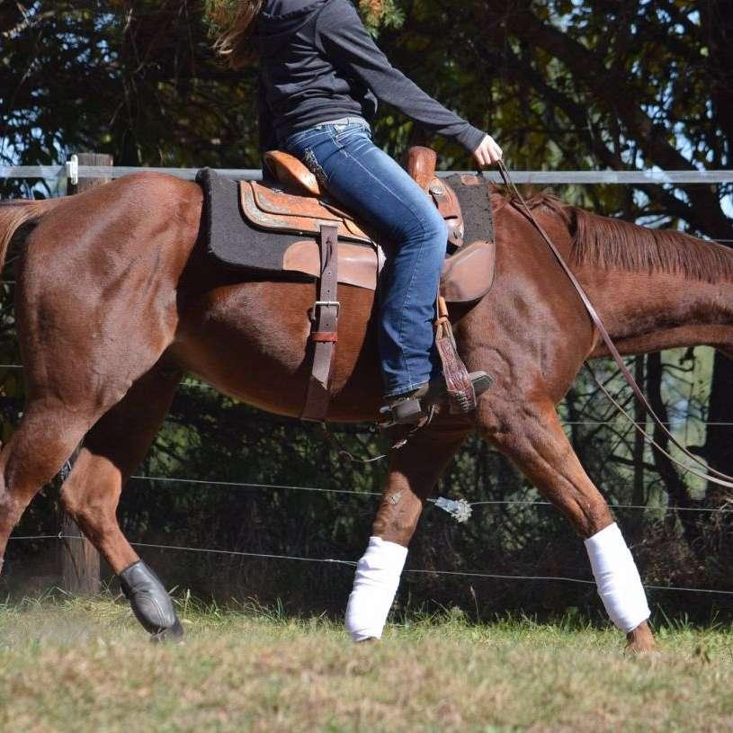 Sanderman Horsemanship