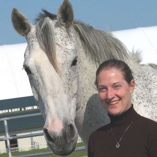 Rebekah Larimer Horse Training & Lessons