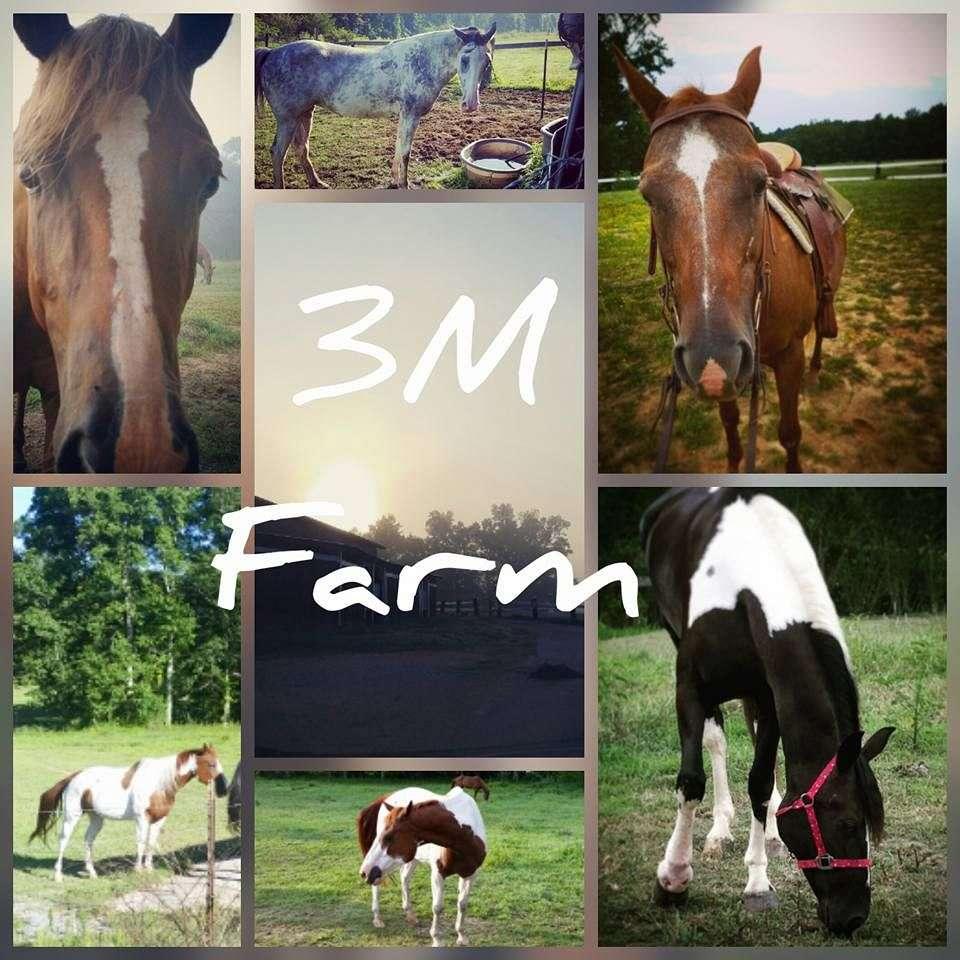 3 M Farm
