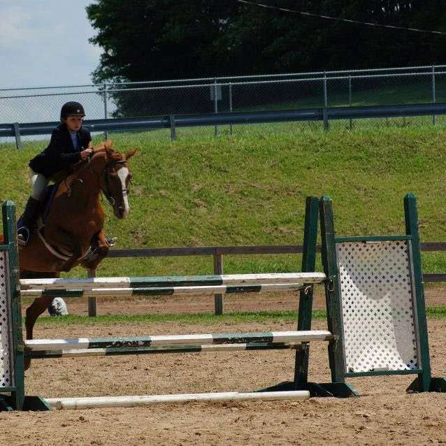 Double D Horse Farm