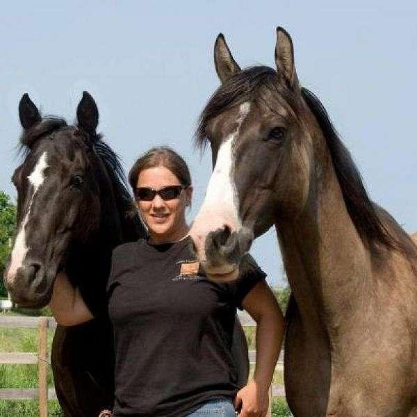 Copper Horse Crusade Heresy Horses