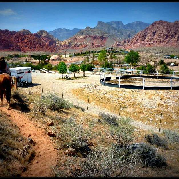 Calico Creek Stables