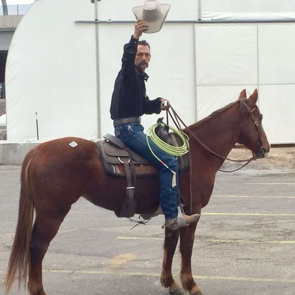 Zen Greenlee Horsemanship
