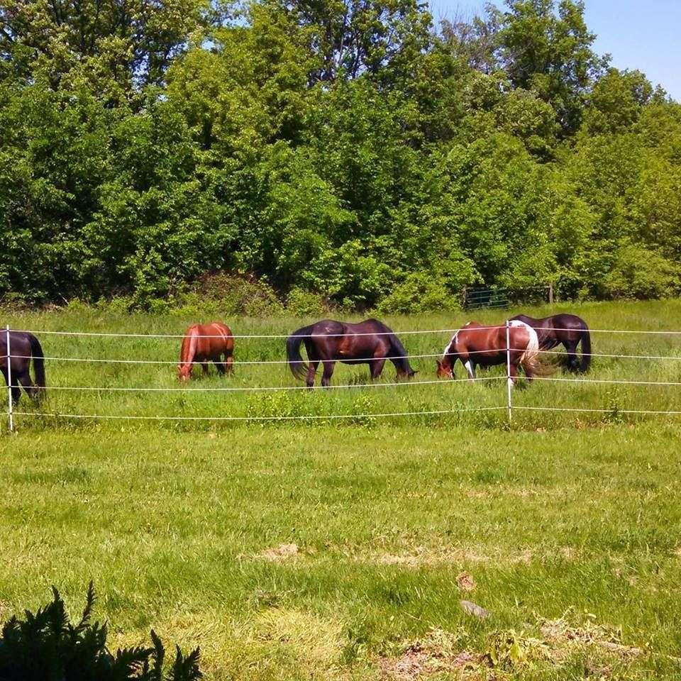 Lovat Farm
