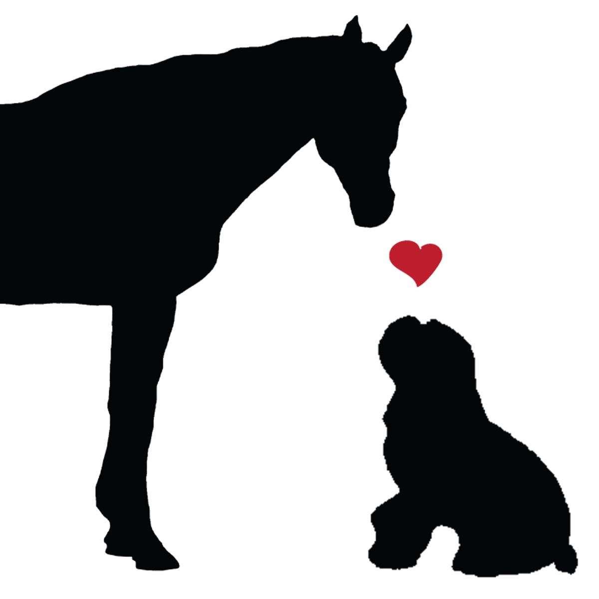 Horse & Hound Marketing