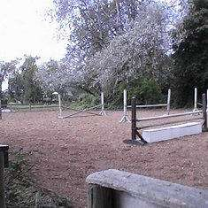 Epona Stable and Farms Ltd