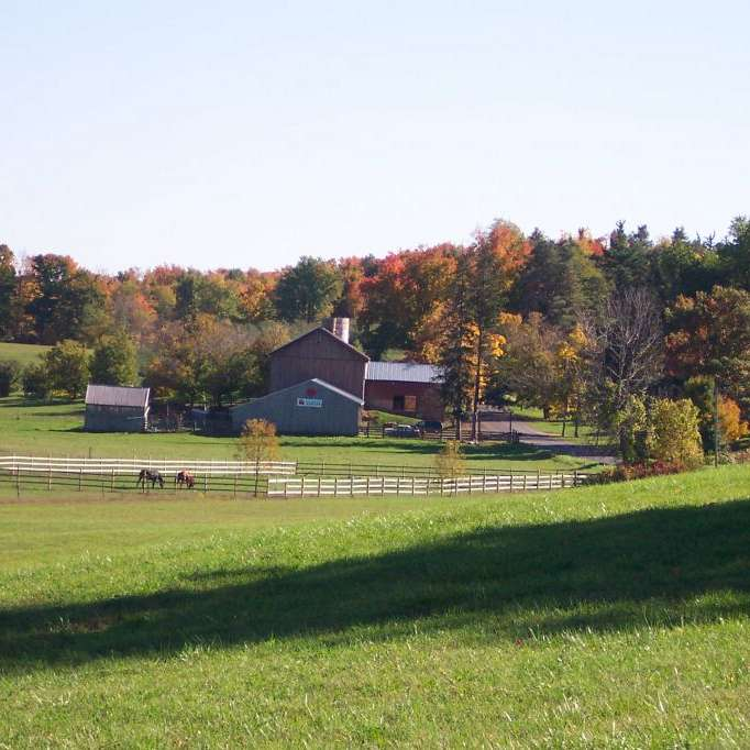 Greco Family Farm and Orchrd