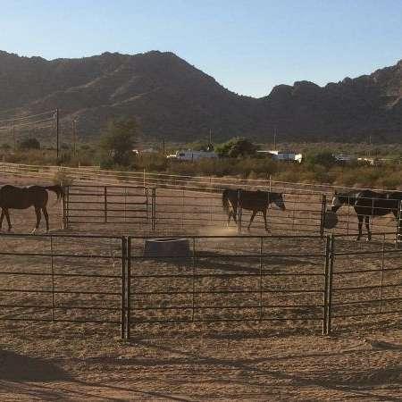 Wishing Welz Ranch