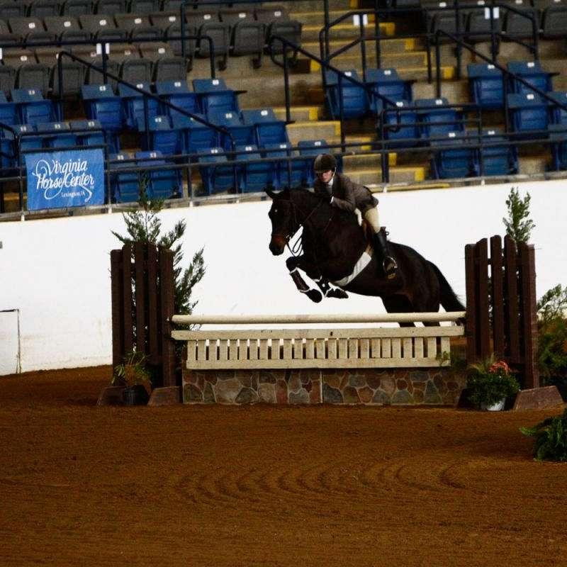 Topline Horse Center