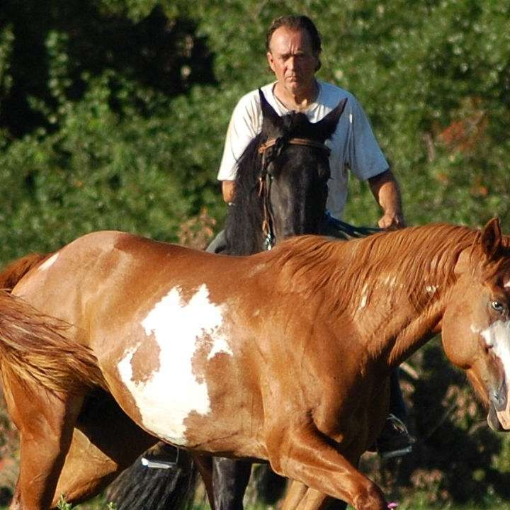 Stallion Ranch