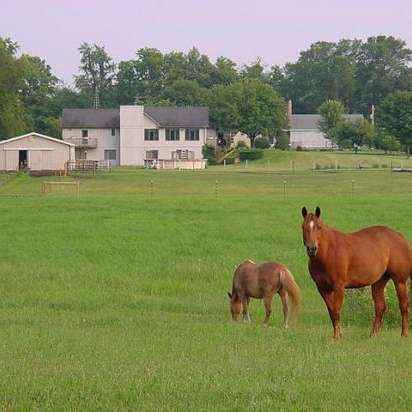 Double B Horsemanship