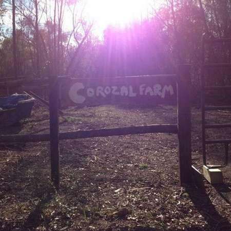 Corozal Farm