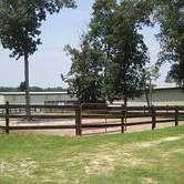 Circle M Farms