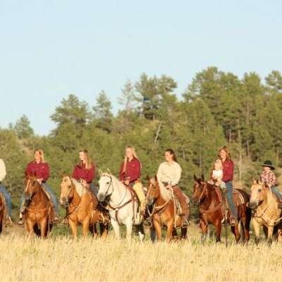 Cee Heart Quarter Horses