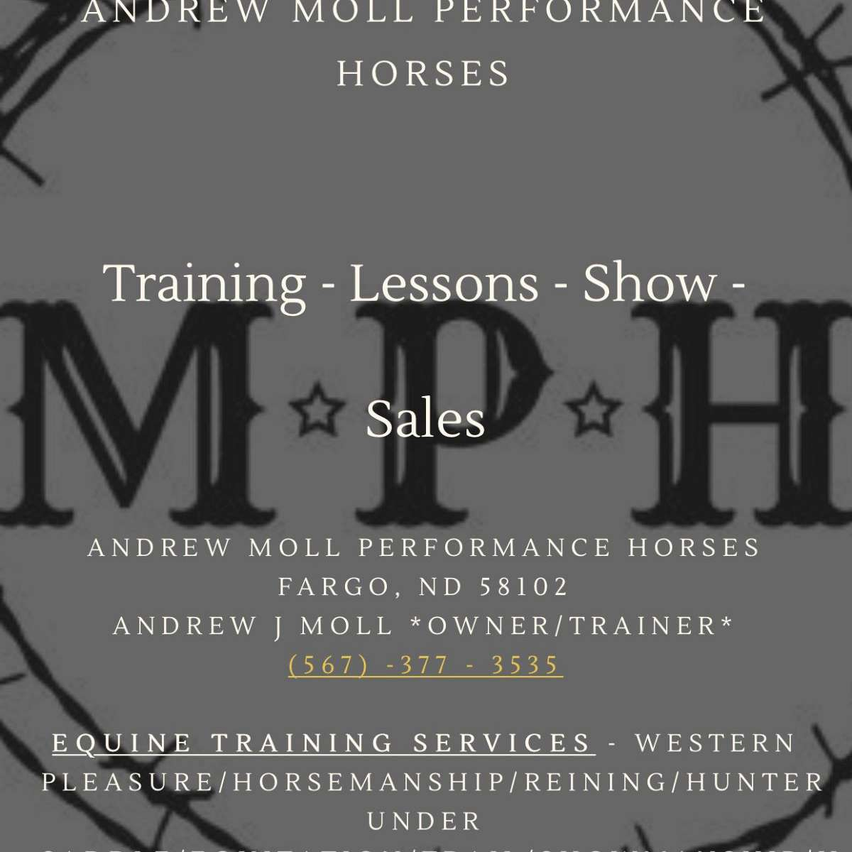 Andrew Moll Performance Horses