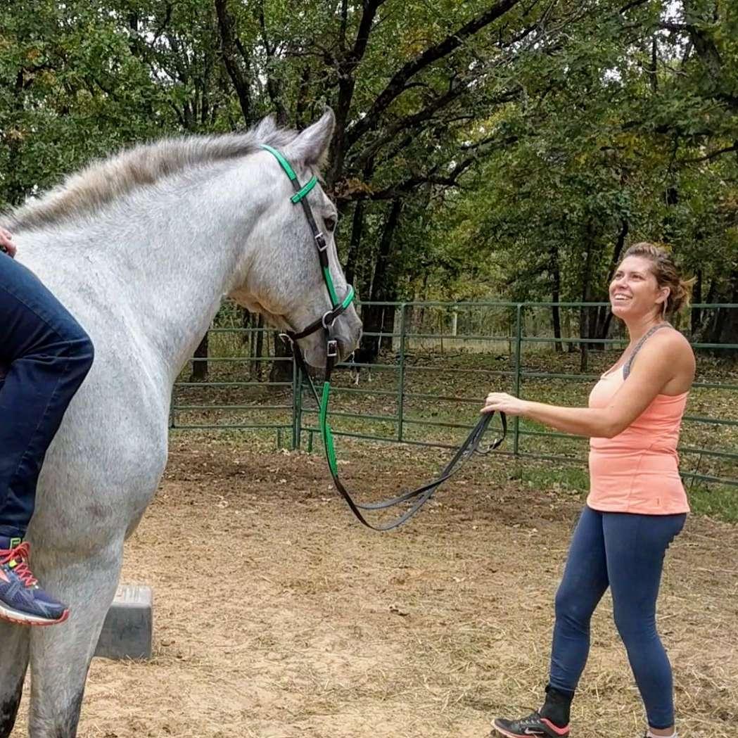 Horse Sense Natural Horsemanship Training