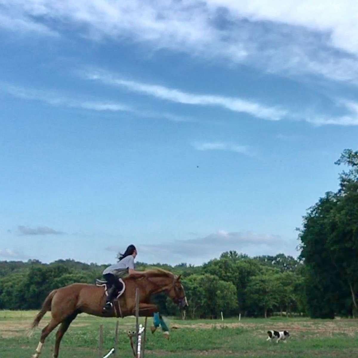 Just Piddlin' Farms