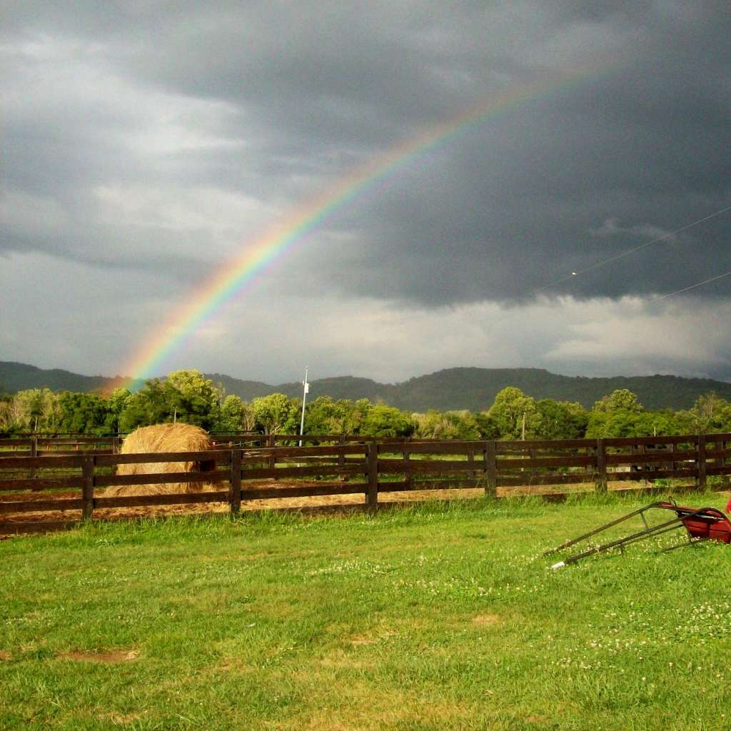 Tibbs Highway Horse Farm