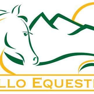 Apollo Equestrian LLC