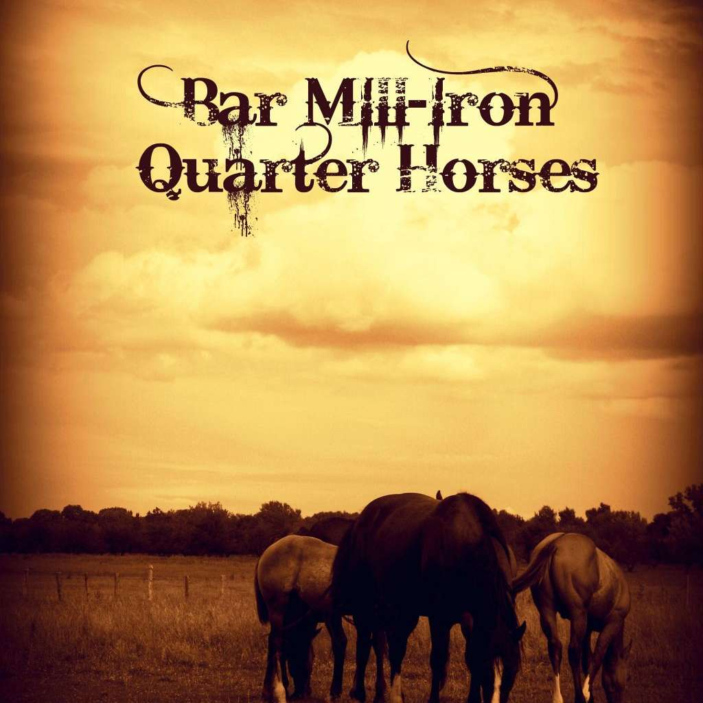Bar Mill-Iron Quarter Horses