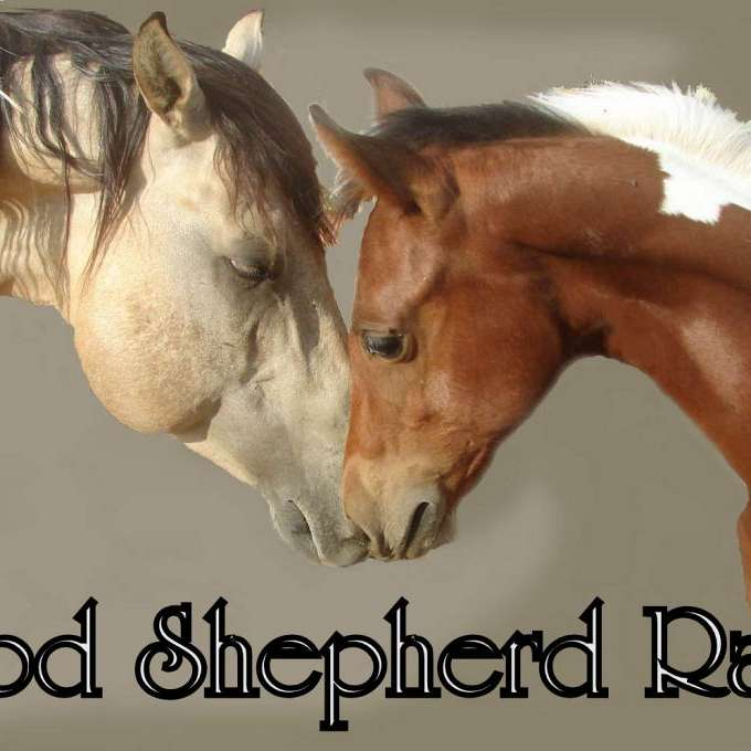 GOOD SHEPHERD RANCH