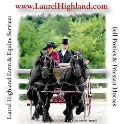 Laurel Highland Farm & Equine Services LLC