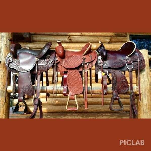 Julies Signature Horses and Tack