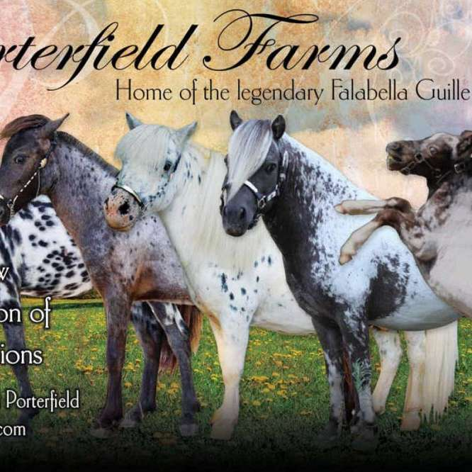 Porterfield Farms International