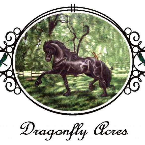 Dragonfly Acres