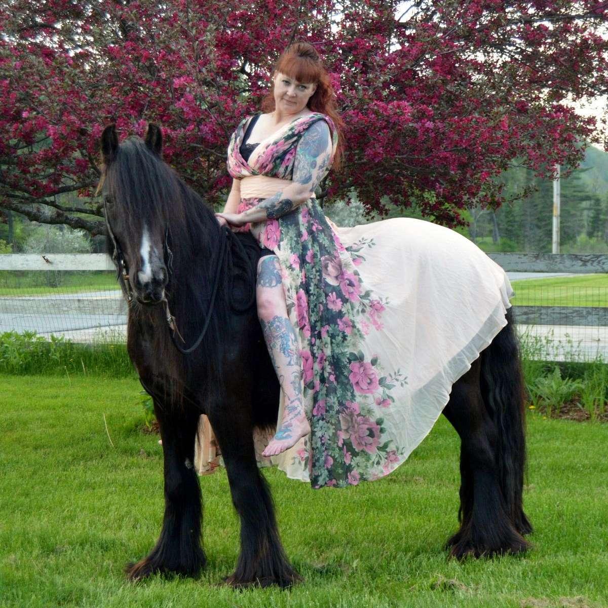 Horseshoe Ranch Gypsy Horses