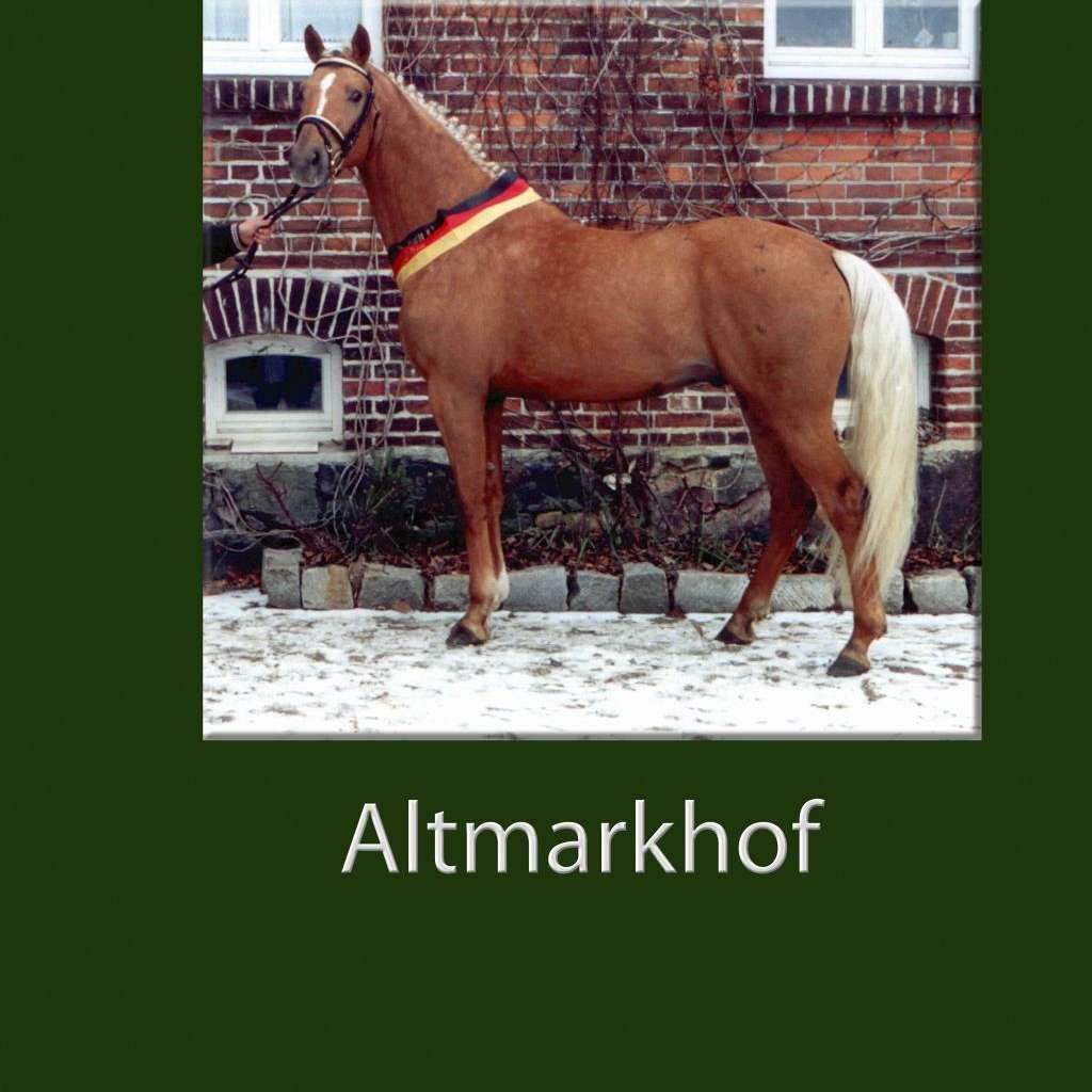 Gestuet Altmarkhof