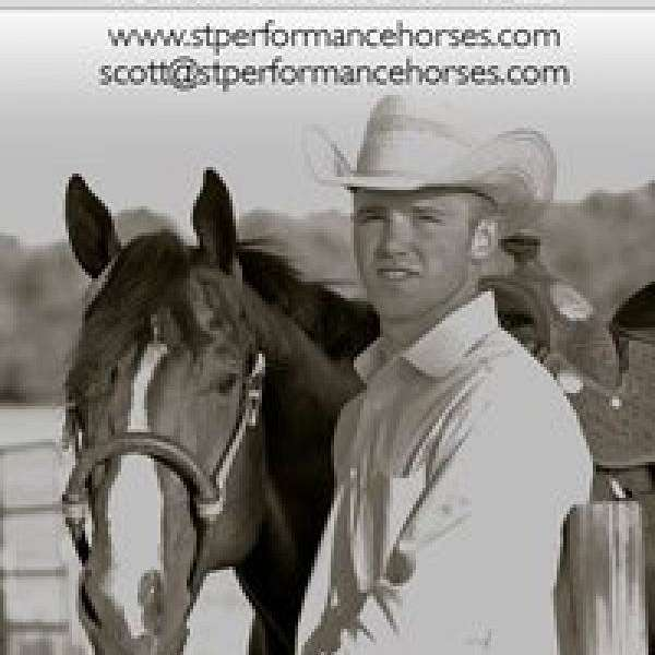 Scott Thomas Performance horses