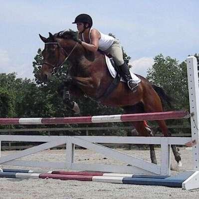 Rhythm and Balance Equestrian Center
