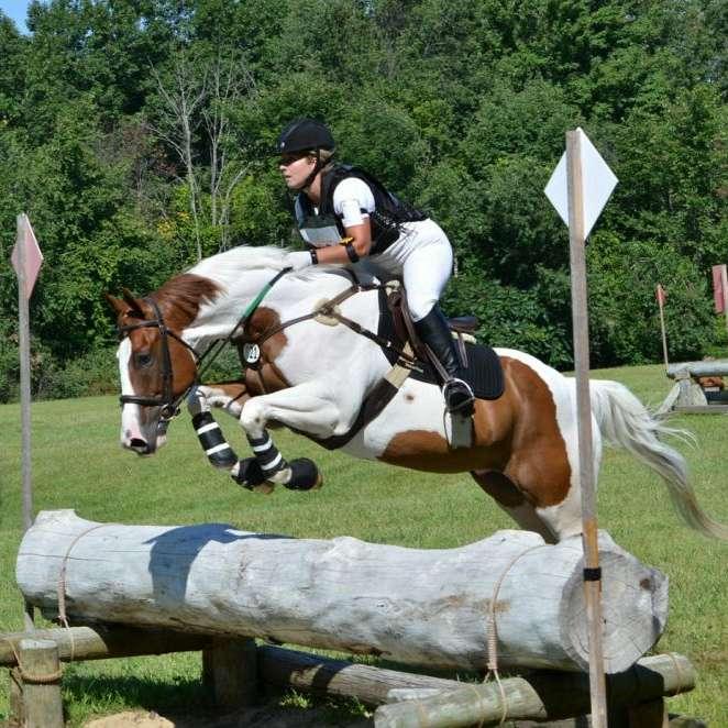 Alexandra Sporthorses