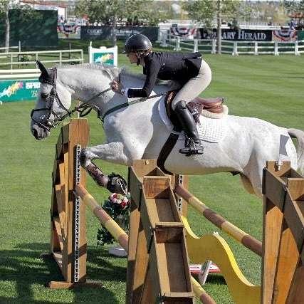 Katalac Sporthorses