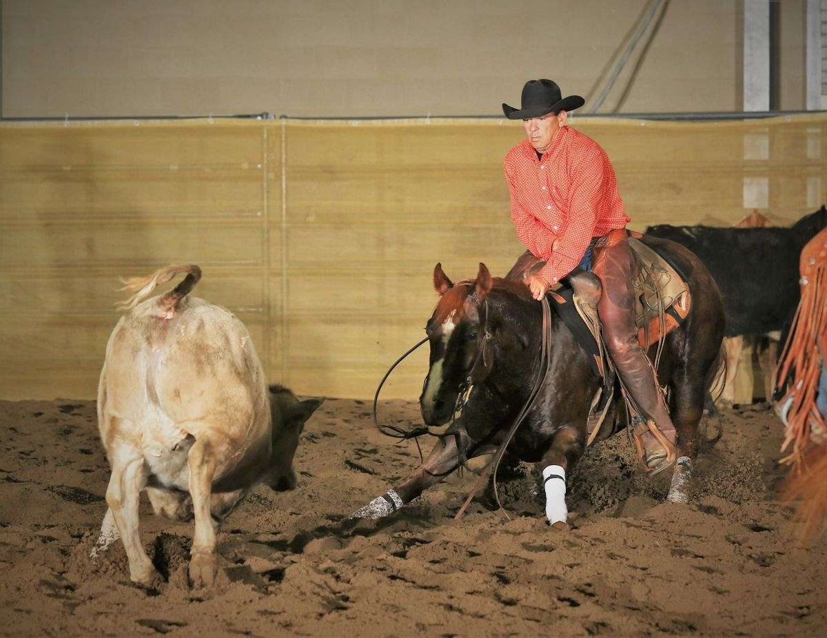 Tracy Surles Cutting Horses Twin Springs Ranch On Equinenow