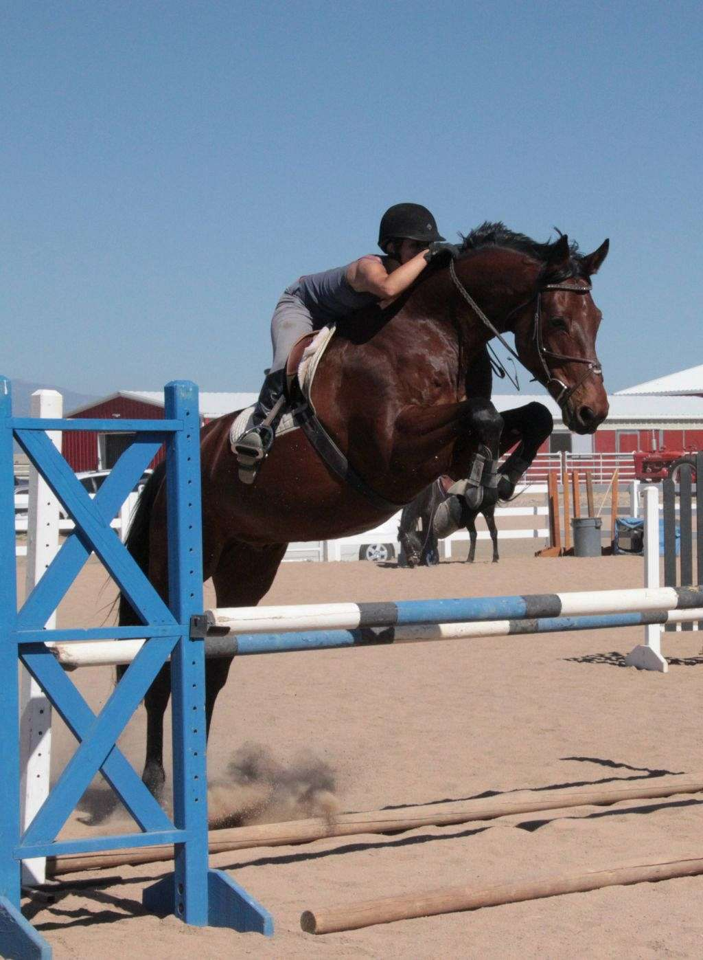 Mm Equestrian Center On Equinenow