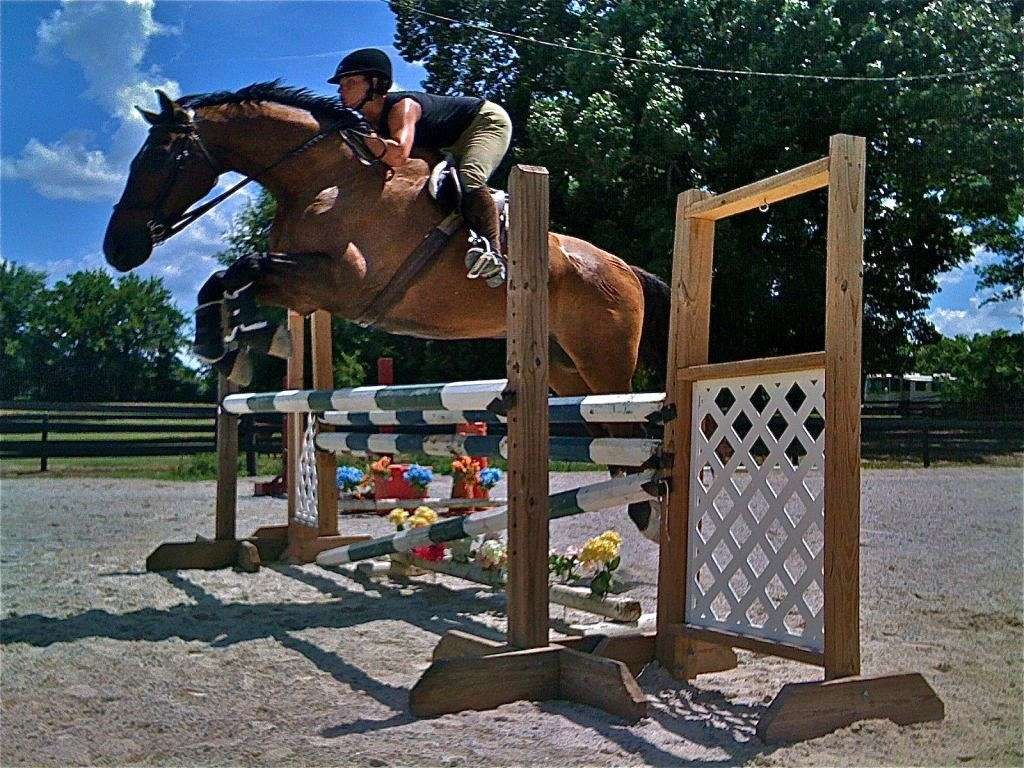 Seven Oaks Equestrian Center On Equinenow