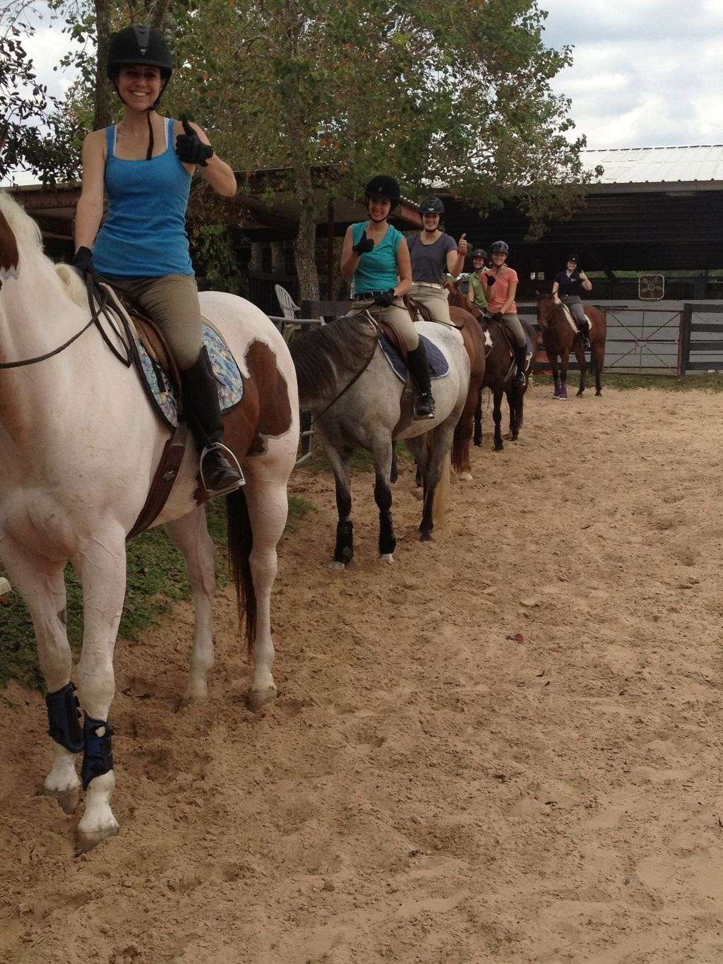 Southern Breeze Equestrian Center Inc On Equinenow