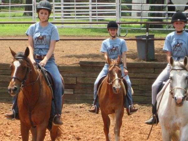 Robinsons Equestrian Center On Equinenow