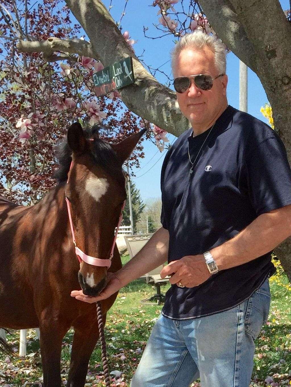 Equestrian cupid com login