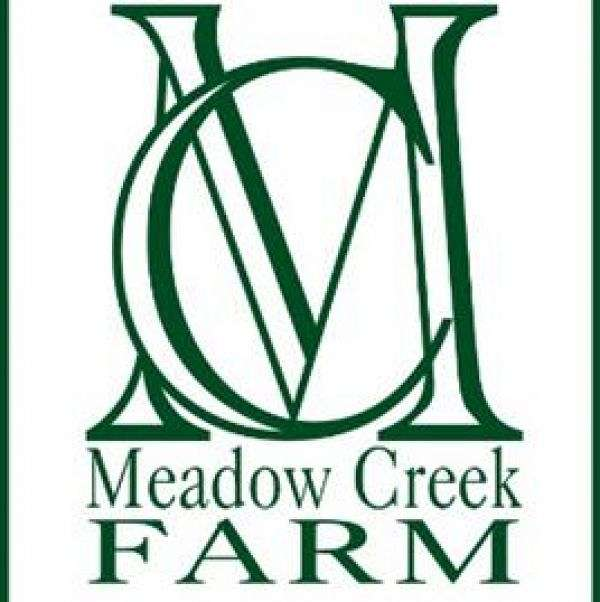 Meadow Creek Farm On Equinenow