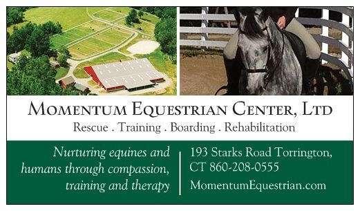 Momentum Equestrian Center Ltd On Equinenow