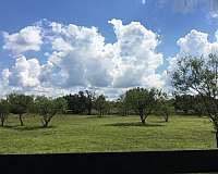 horse-equine-service-businesses-in-spicewood-tx