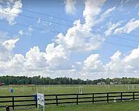 all-around-trail-businesses-in-cope-sc