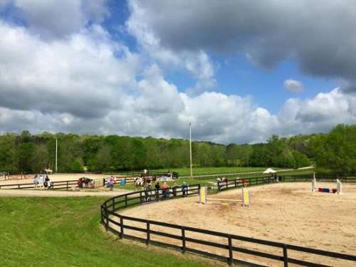 Foxberry Farm On Equinenow